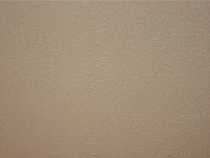 Sanded Starburst Ceiling Texture